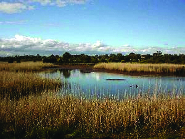 benefits of constructed wetlands as wastewater treatment systems