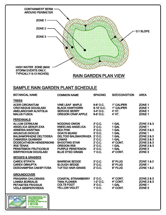 raingarden plan view